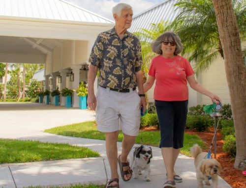 Five Reasons Florida Is the Best Place for Retirees